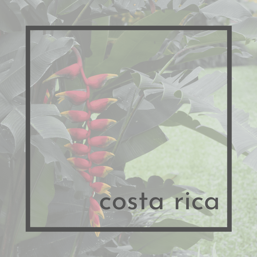 1x1 Title Pages for Costa Rica